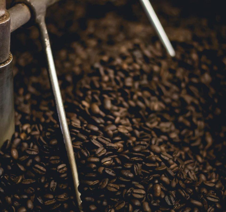 lantao coffee roaster